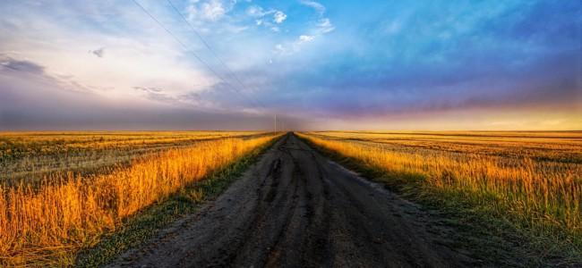 Film veien du kjører